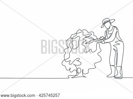 Single One Line Drawing Of Young Male Farmer Cut The Leaves On The Tree Using Plant Scissors. Farmin