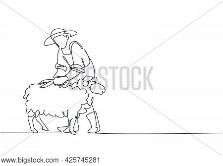 Continuous One Line Drawing Young Male Farmer Was Carefully Shearing The Fleece Using Scissors. Succ