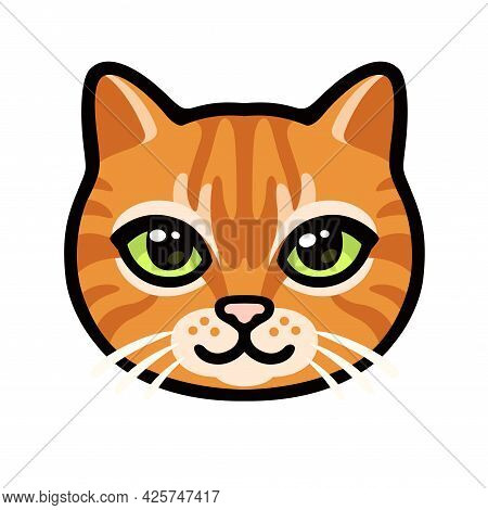 Cartoon Ginger Tabby Cat Face Drawing. Cute Orange Kitty Portrait, Vector Clip Art Illustration.