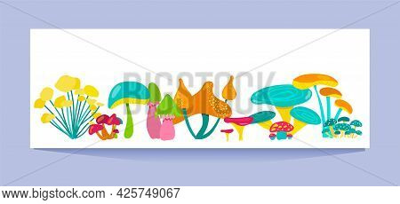 Fabulous Colorful Mushrooms On A White Background. Vector Flat Illustration.