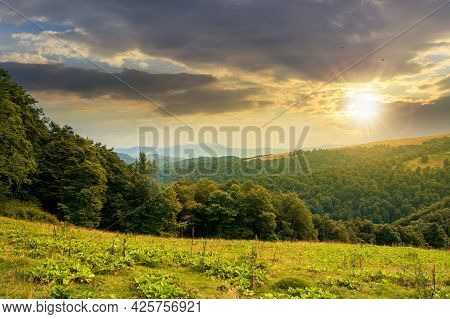 Countryside Landscape In Mountains At Sunset. Green Meadow Under Dramatic Sky In Evening Light. Tree