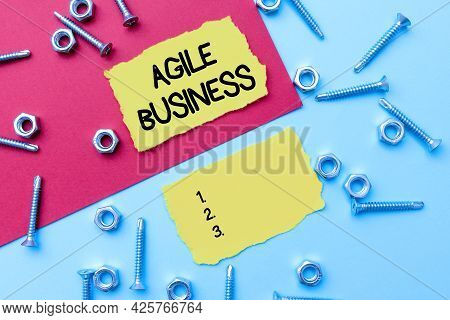 Handwriting Text Agile Business. Business Overview Capability Of Adjusting Quickly To The Market S I