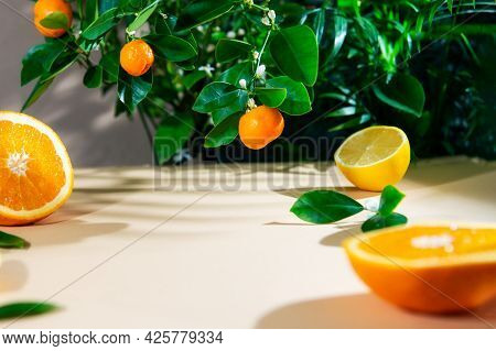 Citrus Slices Of Orange And Lemon Fruits With Green Leaves On Neutral Beige Surface With Blooming Ta