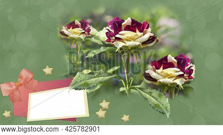 Text Frame On A Green Unfocused Background With Blooming Roses