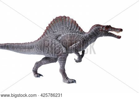Isolated Spinosaurus Dinosaurs. Dinosaurs Toy On White Background. Spinosaurus Was A Really Big Dino