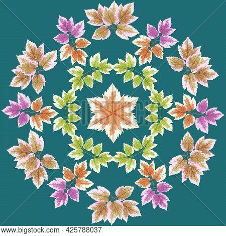 Mandala From Dried Pressed Flowers, Petals. Maple Leaf. Mandala Is Symbol Of Buddhism, Hinduism, Yog