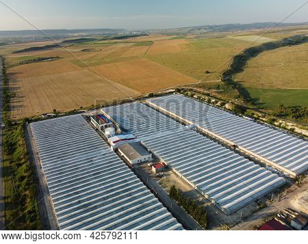 Aerial Drone View Of Huge Areas Glass Greenhouse For Growing Vegetables. Greenhouse Farming, Agricul