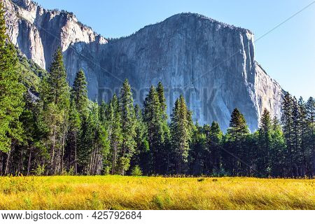 Yosemite National Park - famous, huge and picturesque park in California, USA. The Sierra Nevada - Snowy Mountains. Great trip into the wild. The famous monolithic rock El Capitan.