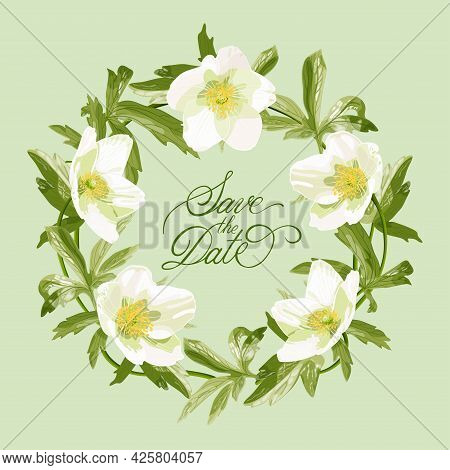 Anemone Flowers. Greeting Card, Wedding Invitation In Pastel Colors. Delicate White Wildflowers.