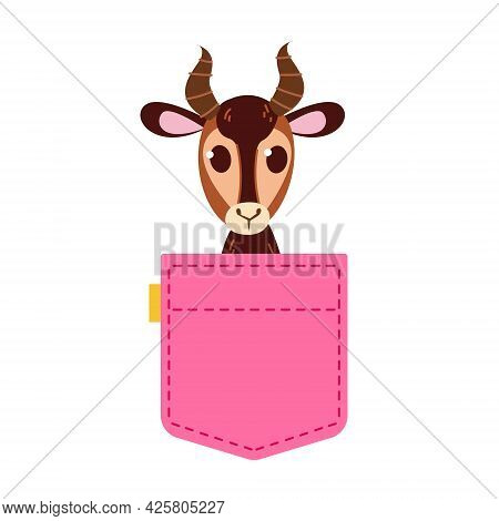 A Cute Pink Jeans Pocket With A Horned Gazelle Peeking Out. Print For Girls. Template For Text. Vect