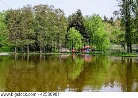 Bucharest, Romania - 1 May 2021: Landscape With Water And Green Weeping Willow Trees On The Shorelin