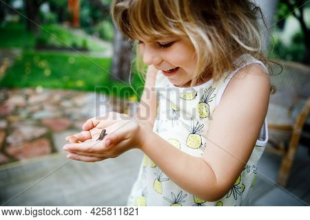 Little Preschool Girl Holding Small Wild Frog. Happy Curious Child Watching And Exploring Animals In