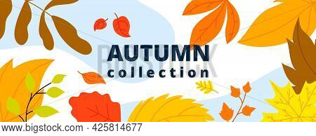 Autumn Leaves Banner. Isolated Leaf, October Fall Wind And Foliage. Thanksgiving Or New Collection,