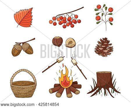 A Set Of Colored Doodles. Pinecone, Bonfire, Stump, Mountain Ash, Berry, Acorns, Hazelnut. Forest, A
