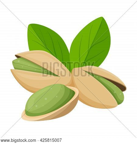 Pistachio Nuts In A Shell With Leaves. Healthy Food, An Ingredient. Flat, Cartoon Style. Color Vecto