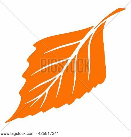 Carved Autumn Leaf. Nature Bright Leaves Of Trees. Abstraction.