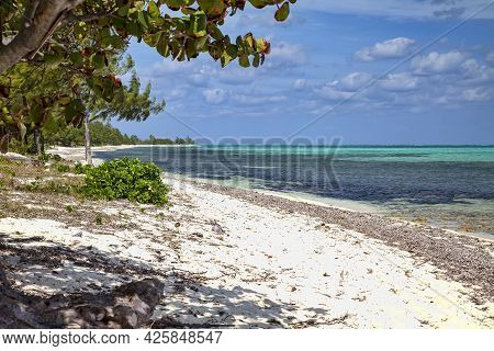 Caribbean Sea And The White Sandy Beaches In Grand Cayman, Cayman Islands.