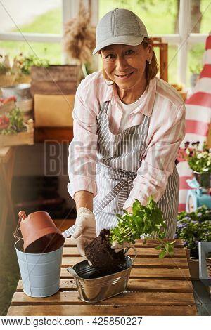 Happy Elderly Woman Planting Small Bush On Veranda