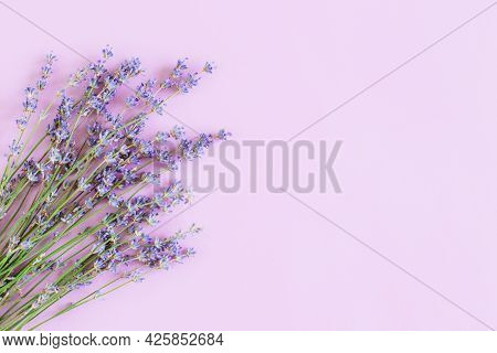 Beautiful Lavender Floers On A Violet Pastel Background. Flat Lay. Place For Text.