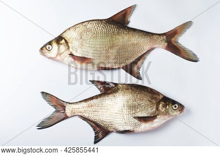 Two Freshwater Silver Bream Fish On A White Surface.