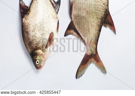 Freshwater Silver Bream Fish On A White Surface.