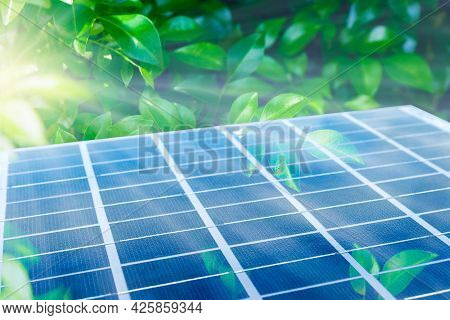 Solar Panel Among Green Leaves. Photovoltaic Module As Integrated Into The Ecosystem. Alternative Cl