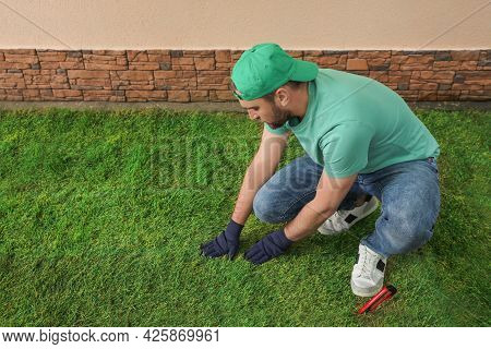 Worker Laying Grass Sod At Backyard, Space For Text