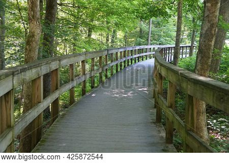 The Wooden Walking Path At Mammoth Cave National Park Near Kentucky, U.s.a