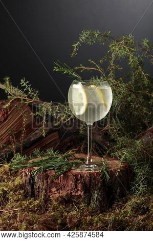 Gin And Tonic Cocktail With Lemon And Rosemary. A Cold Iced Refreshing Drink In A Frozen Glass.