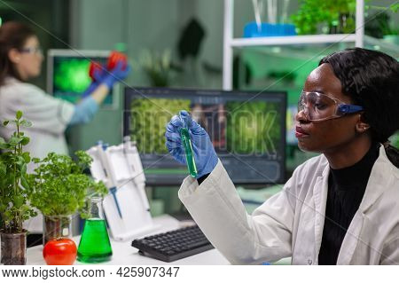 African Reseacher Looking At Test Tube With Green Dna Of Sapling Analyzing Genetic Mutation Modified