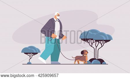 Active Senior Man Walking In Park With His Little Dog Grandfather Relaxing With Pet Horizontal