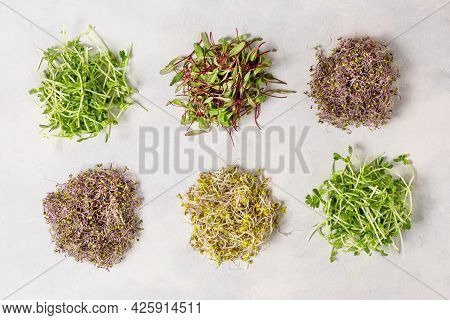 Mix Of Various Sprouts On White Background Top View. Sprouted Seeds. Healthy Eating, Detoxification.