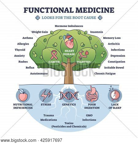 Functional Medicine As Disease Treatment With Looks For Root Cause Outline Diagram. Tree With Cancer