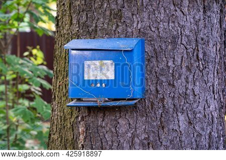 An Old Blue Mailbox Is Attached To A Tree Trunk And Casually Tied With Wire. There Is An Erased Plaq