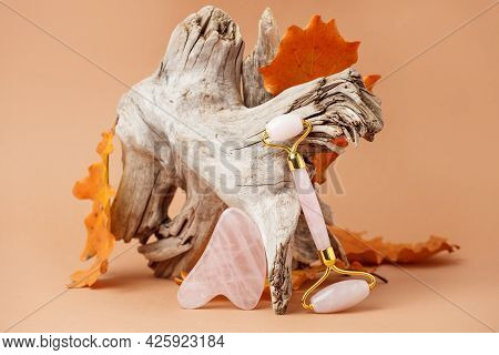 Chinese Gua Sha Stones On Wooden Root, Autumn Fall Leaves And Neautral Beige Background.  River Jade