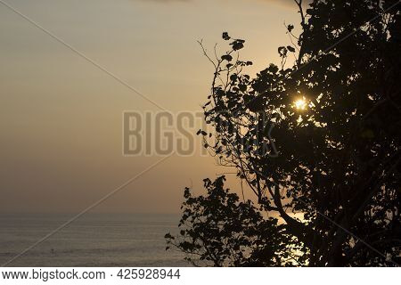 Sunset On The Beach. The Sun Shine Behind The Tree. Tranquil Nature Landscape Scenery. Inspirational