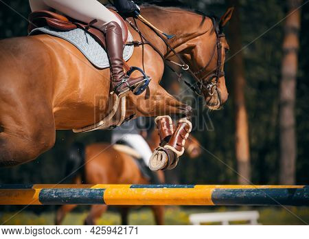 A Beautiful Bay Strong Racehorse With A Rider In The Saddle Jumps Over The High Yellow Barrier At Th