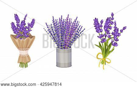 Bunch Of Lavender Fragrant Floral Twigs Wrapped In Paper And Rested In Vase Vector Set