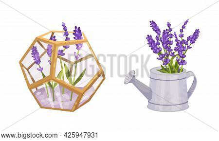 Lavender Fragrant Floral Twigs Rested In Watering Can And In Glass Flowerbed Vector Set