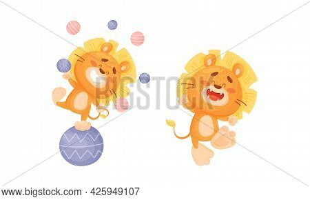Cartoon Lion Cub Playful Character With Thick Mane Juggling With Balls And Walking Vector Set