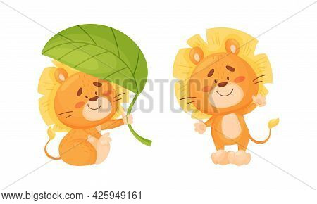 Cartoon Lion Cub Playful Character With Thick Mane Waving Paw And Sitting Under Green Leaf Vector Se