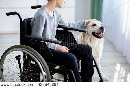 Cropped View Of Impaired Teenager Petting His Dog, Sitting In Wheelchair At Home, Closeup