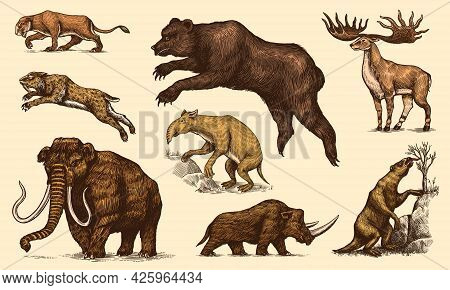 Mammoth Or Extinct Elephant, Woolly Rhinoceros Cave Bear Lion. Panthera Saber Toothed Tiger, Irish E