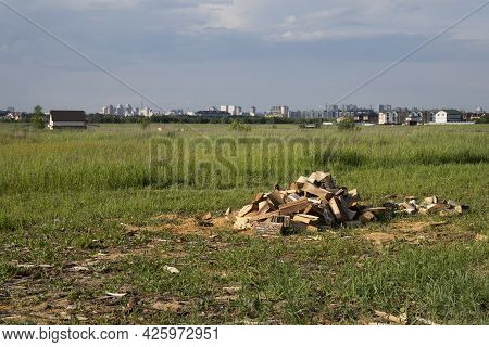 Pile Of Chopped Firewood On A Green Grass