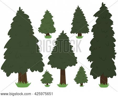 Set Cartoon Nature Tree Fir Isolated On White Background. Vector.