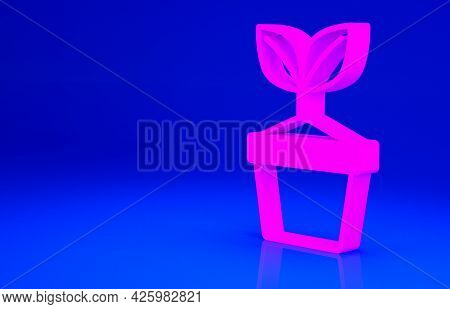 Pink Plant In Pot Icon Isolated On Blue Background. Plant Growing In A Pot. Potted Plant Sign. Minim