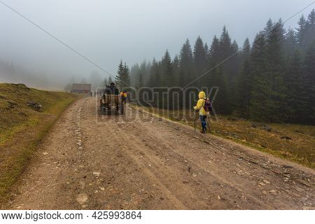 Chocholowska Valley, Tatra Mountains, Poland - 09 April 2016: People Walking In The Chocholowska Val