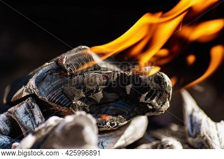 Charcoal That Many People Use For Barbecues During The Summer. Charcoal Is A Brown Or Black Material