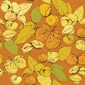 Seamless pattern with highly detailed hand drawn hazelnuts on brown background poster