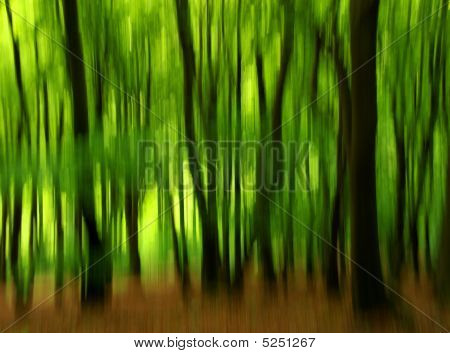 Blurrytrees